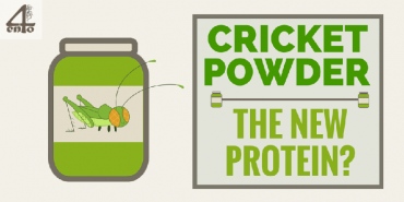 Cricket Flour & Powder – The New Protein Powder?