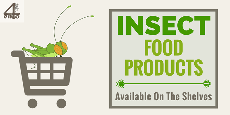 Insect Food Products Currently Available