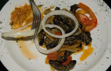 33. MOPANE WORMS